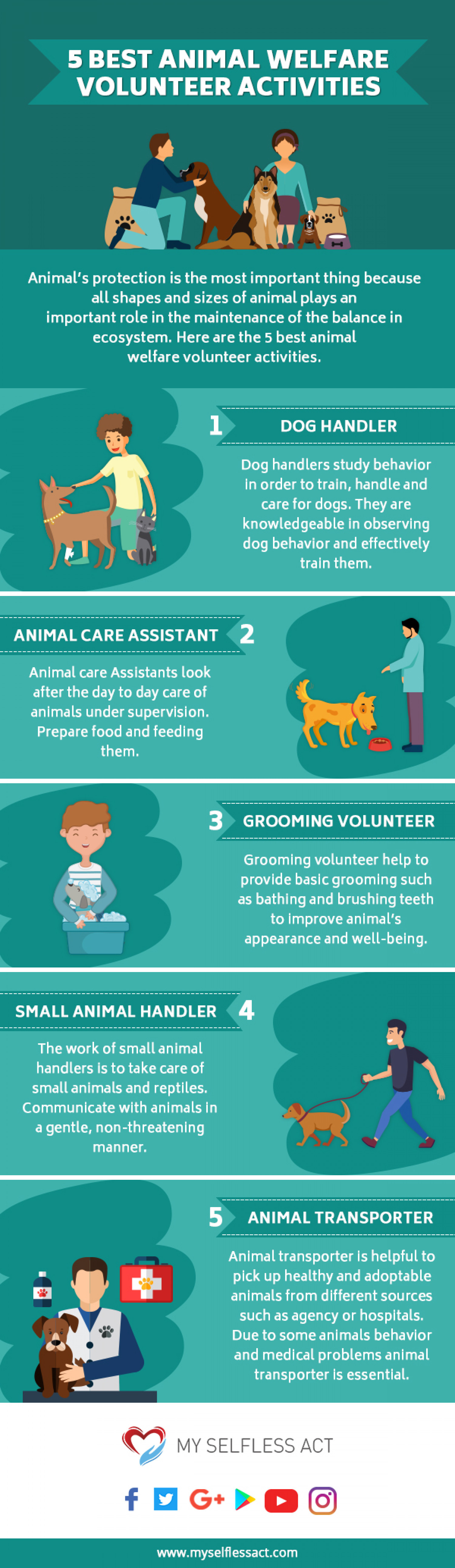 5 BEST ANIMAL WELFARE VOLUNTEER ACTIVITIES Infographic