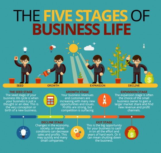 The Five Stages of Business Life | Visual ly