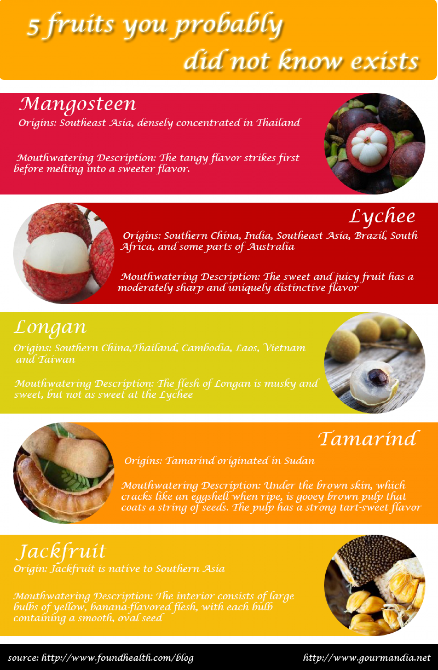 5 Fruits You Probably Didn't know Exists Infographic