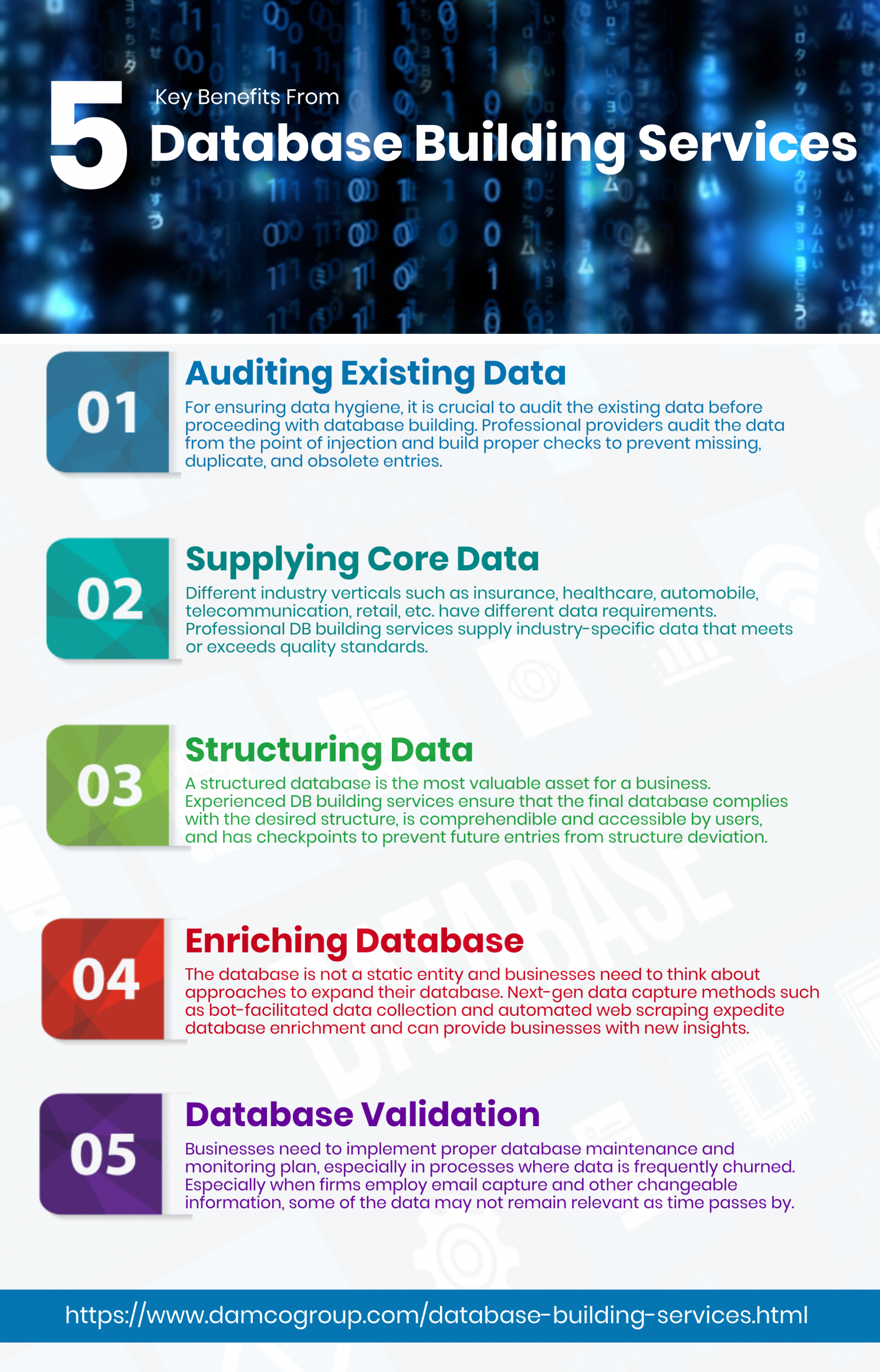 5 Key Benefits From Database Building Services  Infographic