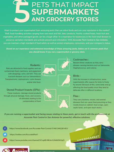 5 Pests that impact supermarkets and grocery stores Infographic