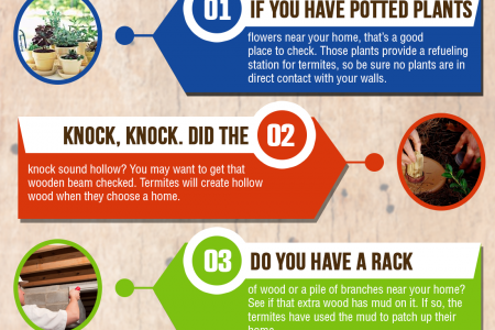 5 Places to Check for Termites Infographic
