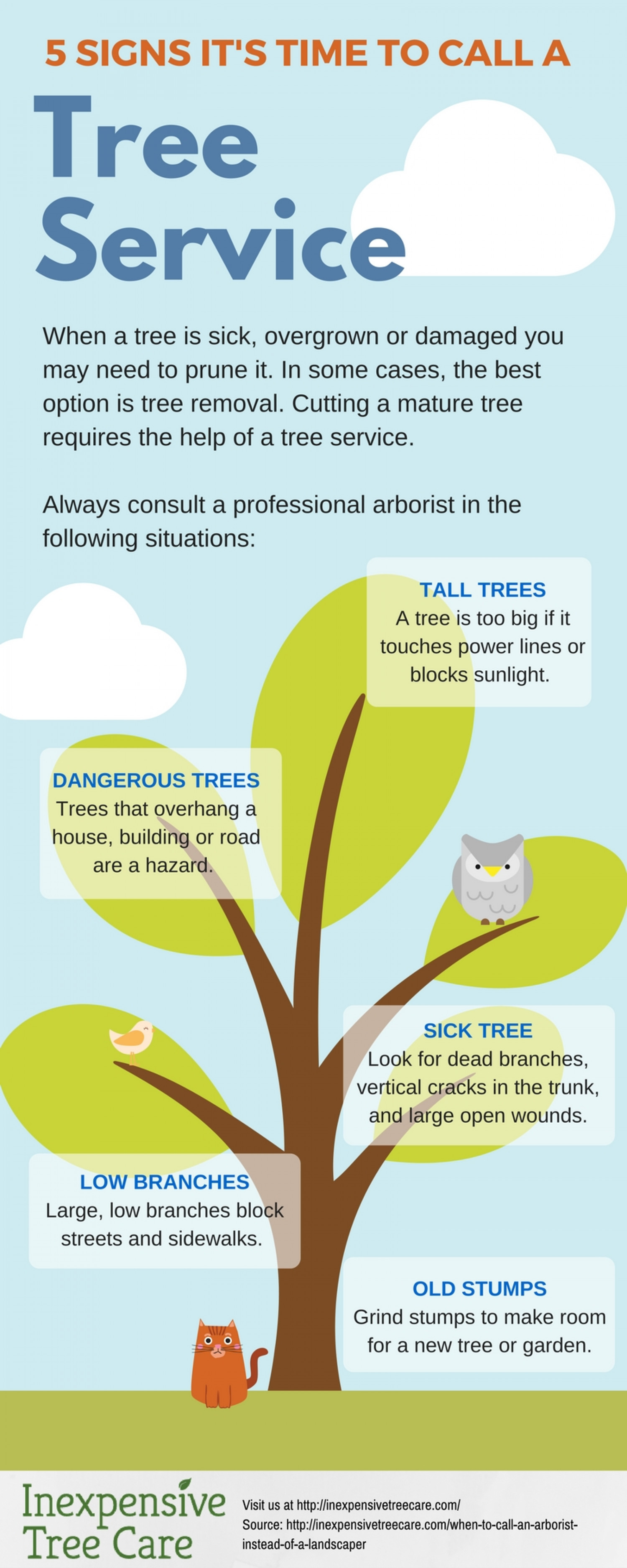 5 Signs It's Time to Call a Tree Service Infographic