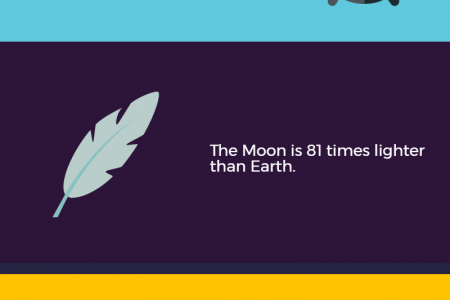 5 Things you didn't know about the Moon Infographic