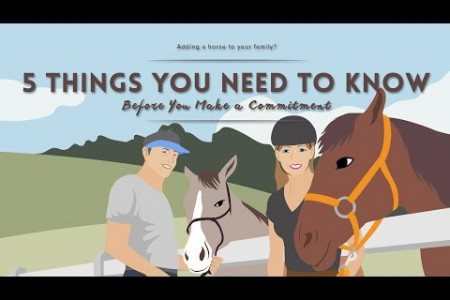 5 Things You Must Know Before Owning a Horse Infographic