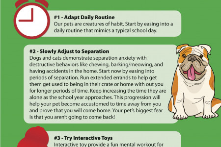 5 Tips to Ease Pet Anxiety When The Kids Go Back to School Infographic