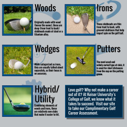 5 Types of Golf Clubs | Visual.ly