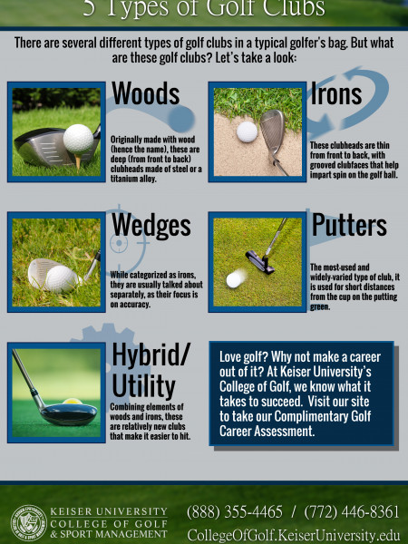 5 Types of Golf Clubs Infographic