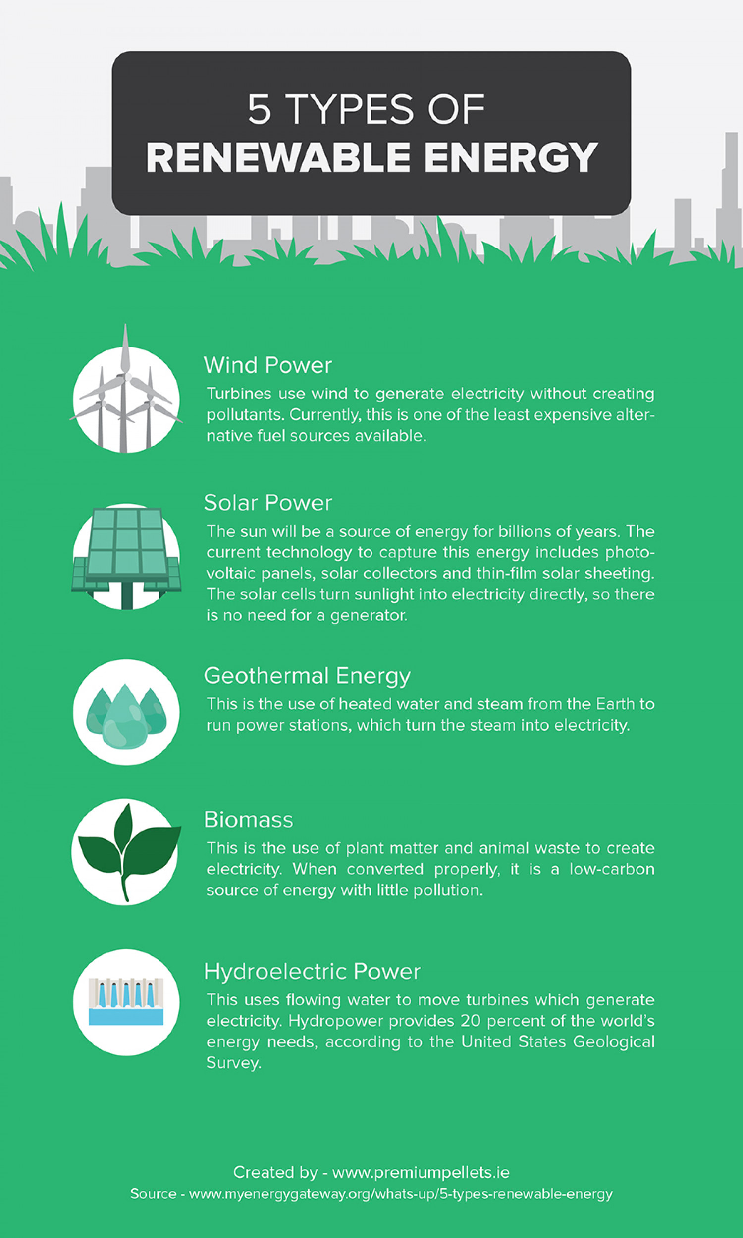 5 Types of Renewable Energy Infographic