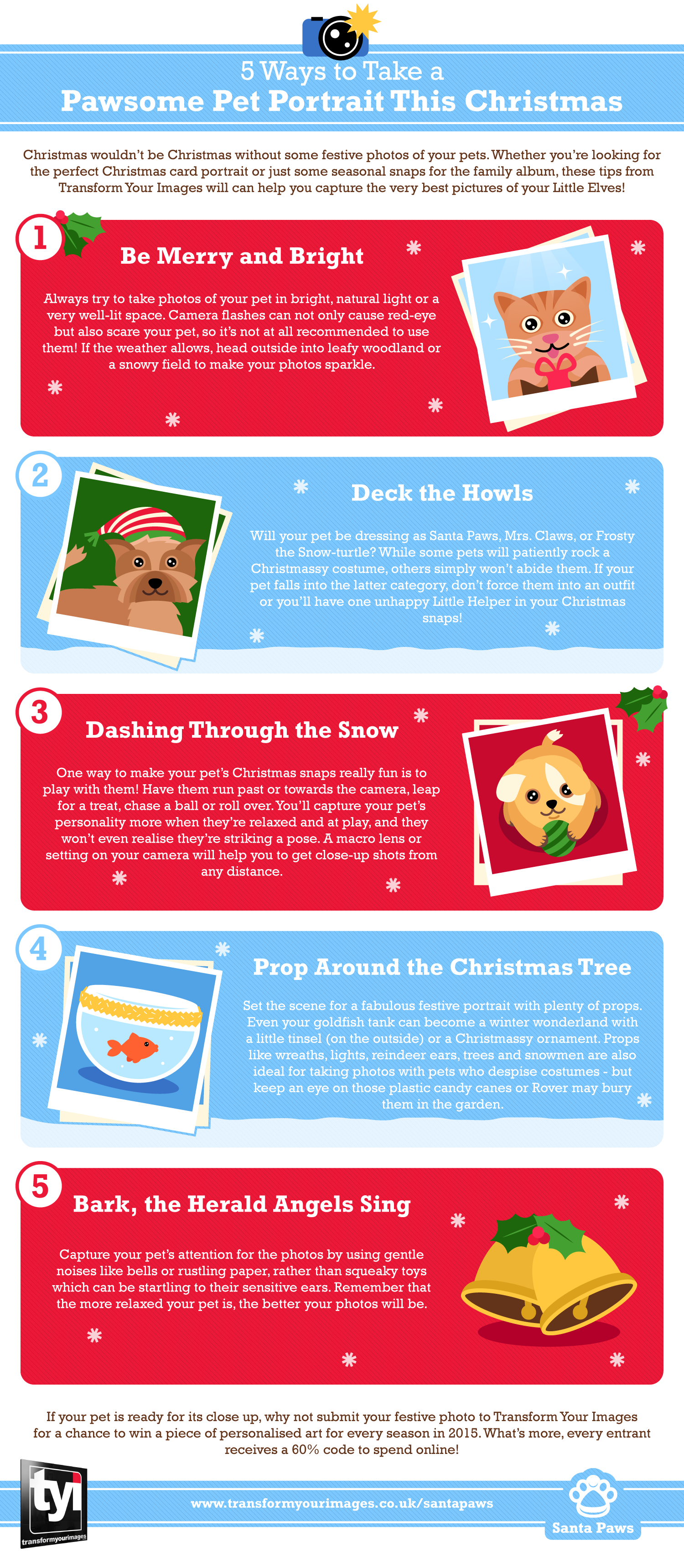 5 Ways to Take a Pawsome Pet Portrait this Christmas Infographic
