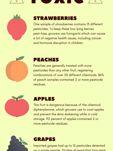 5 Well Known Fruits that Appear to be Toxic Infographic