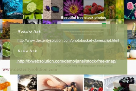 500px Clone Script, PHP Image Gallery Script, PHP Images & Media Script Infographic