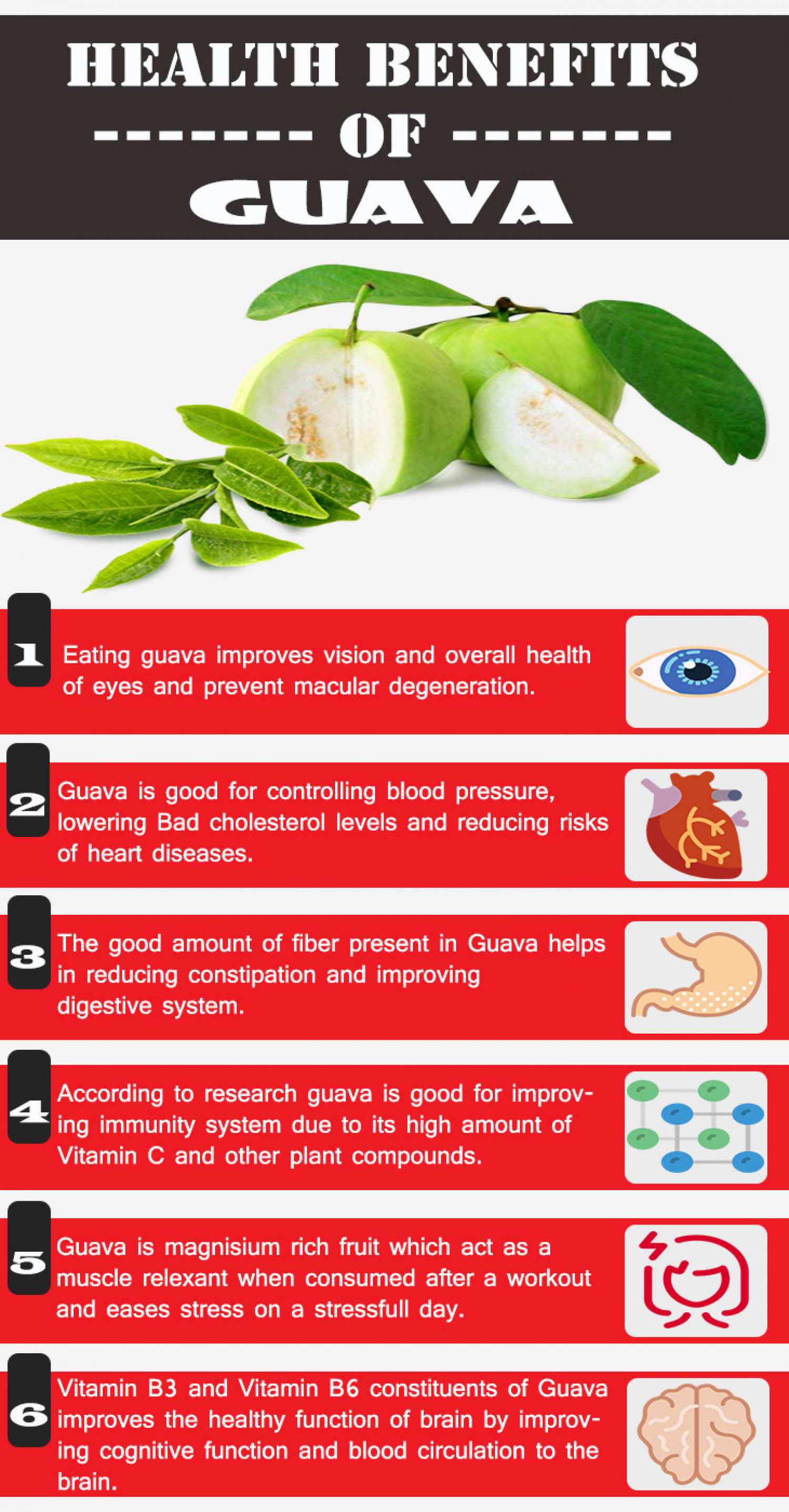 6 Amazing Health Benefits of Guava Infographic
