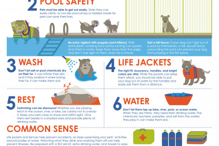 6 Common Safety Tips for Dogs & Water Infographic