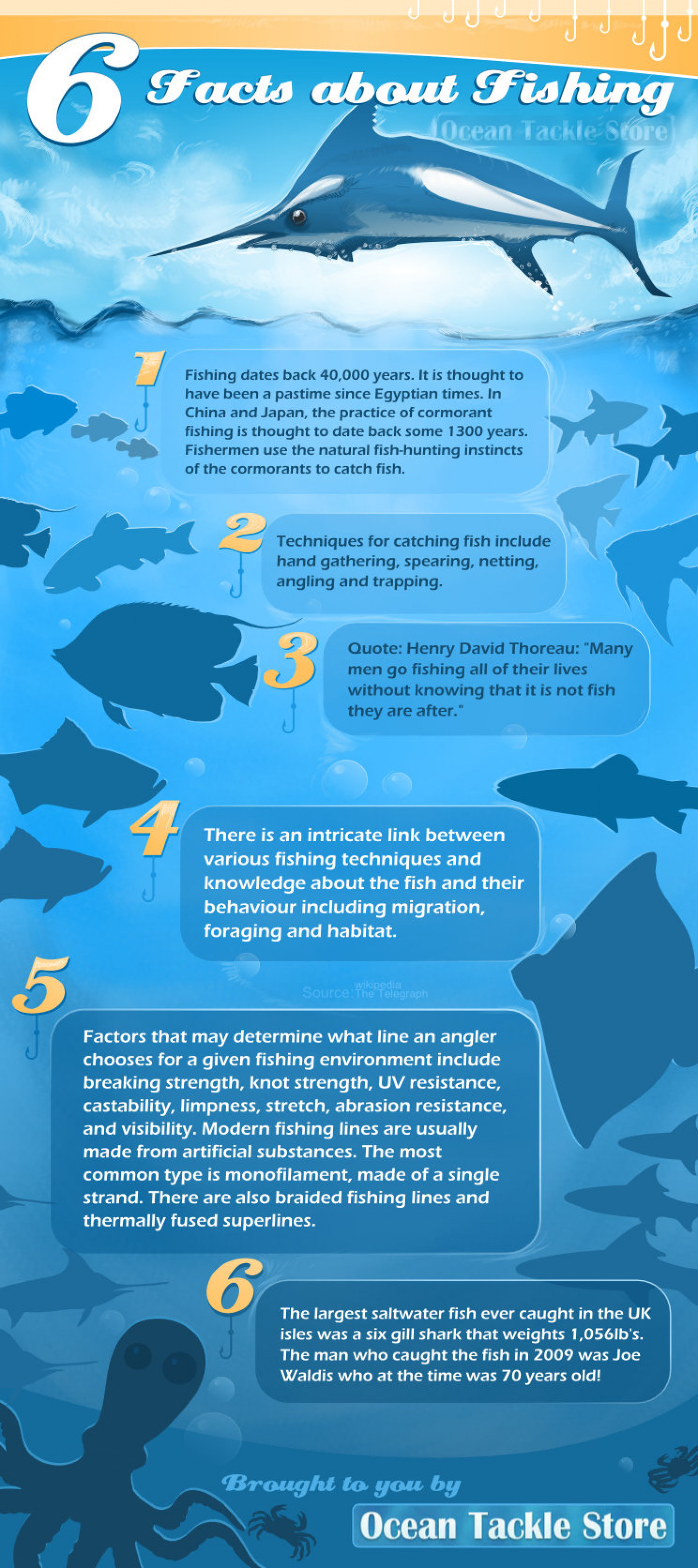 6 facts about fishing for Facts about fishing