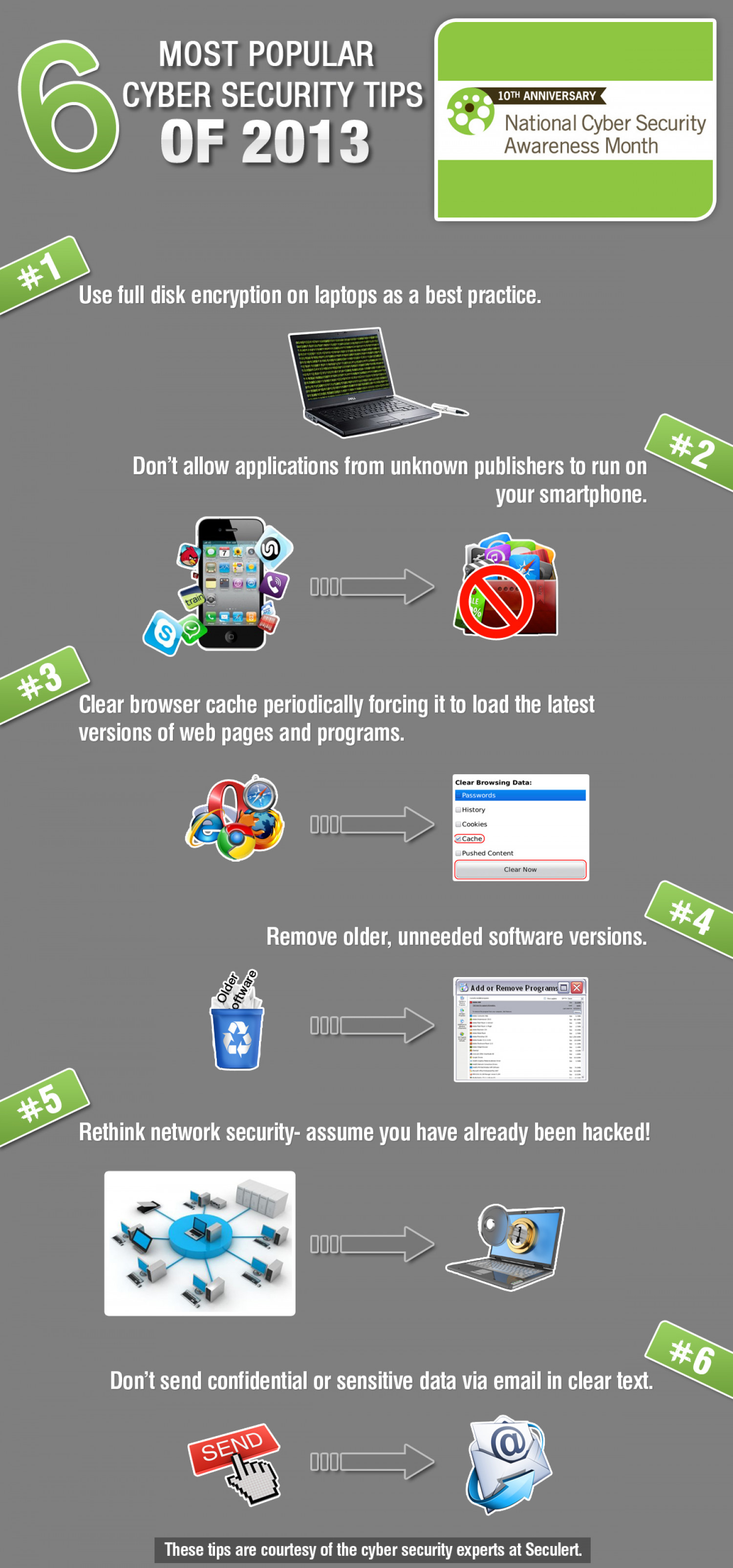 6 Most Popular Cyber Security Tips of 2013 Infographic