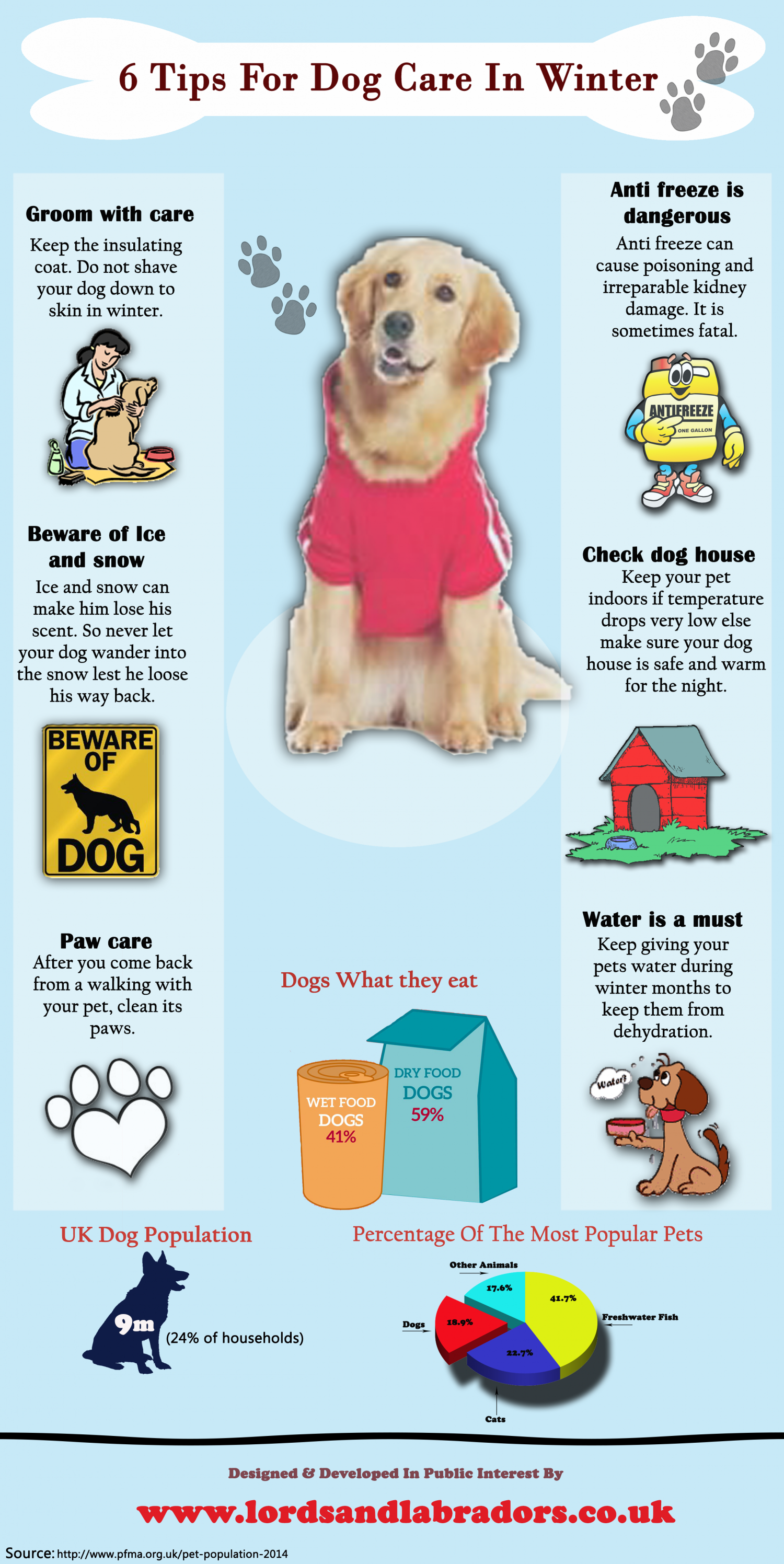 6 Tips for Dog Care in Winter Infographic