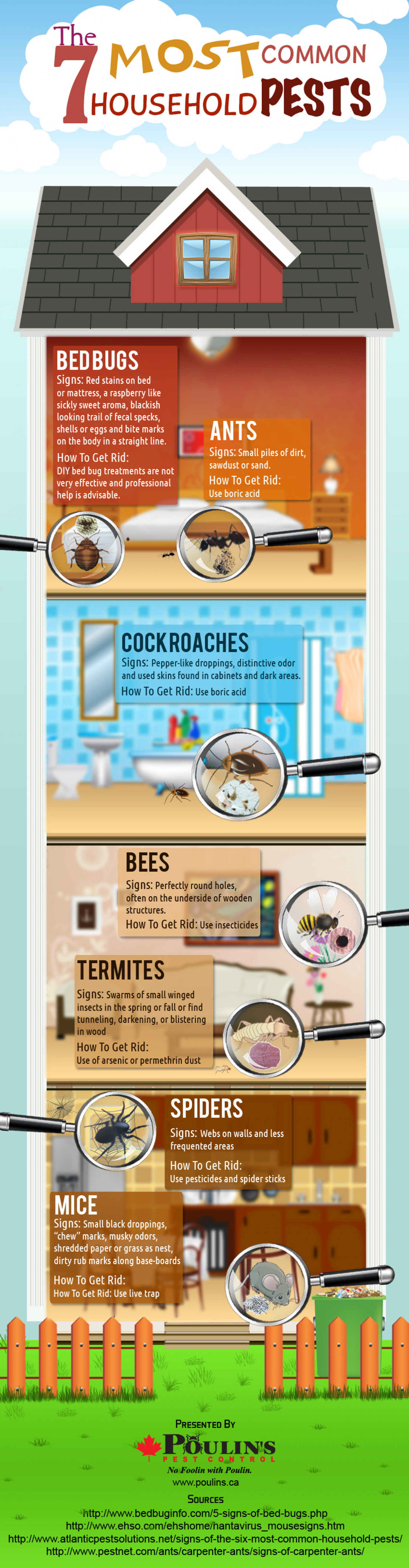 The 7 Most Common Household Pests Infographic