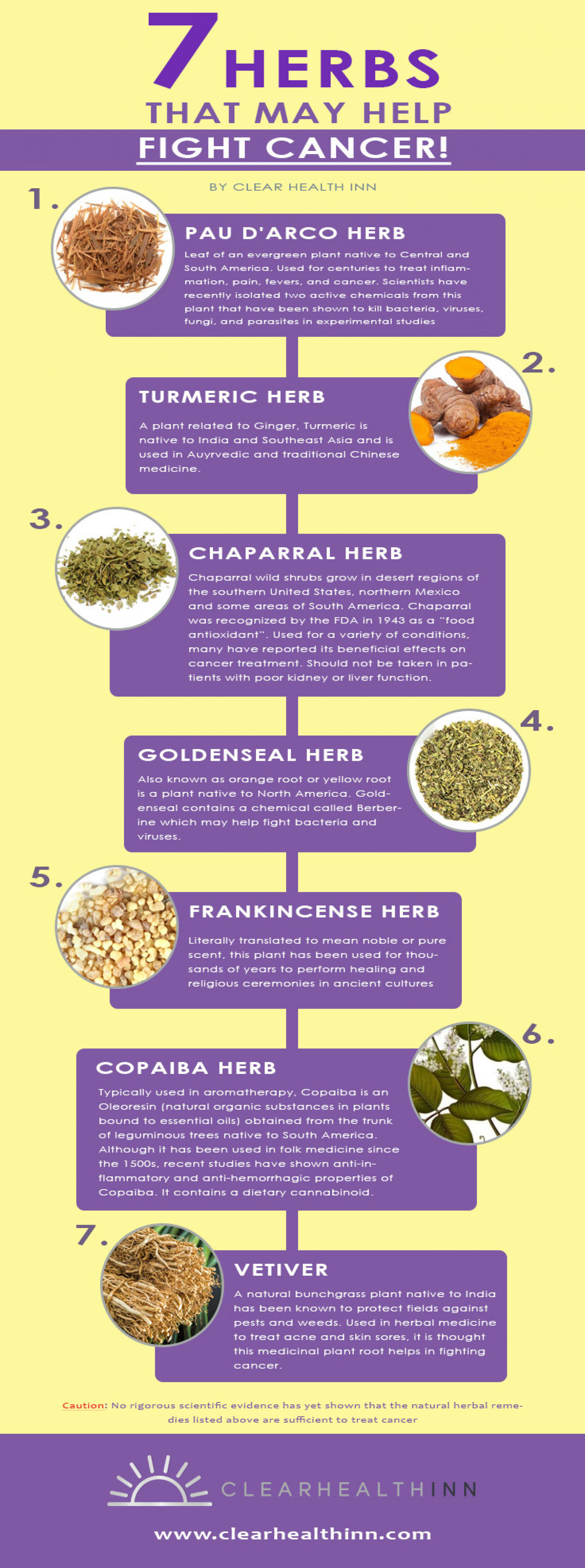 7 Herbs That May Help Fight Cancer Infographic