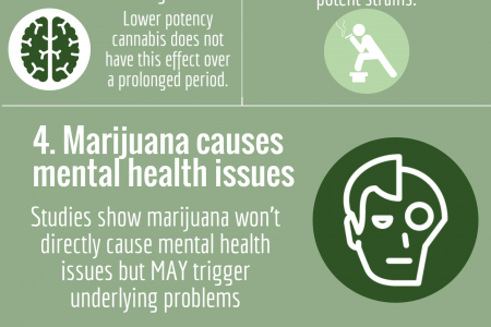 7 Marijuana Misconceptions Infographic