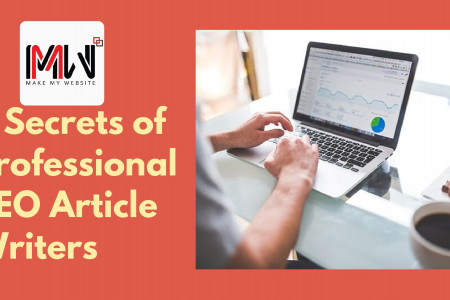7 secrets of Professional SEO Article Writers  Infographic