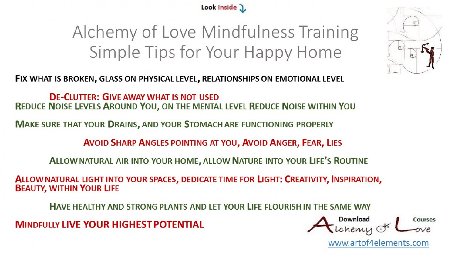 infographic feng shui. 7 Simple Feng Shui Mindfulness Tips For Happy Home Infographic I