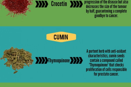 7 Spices that prevent Cancer Infographic
