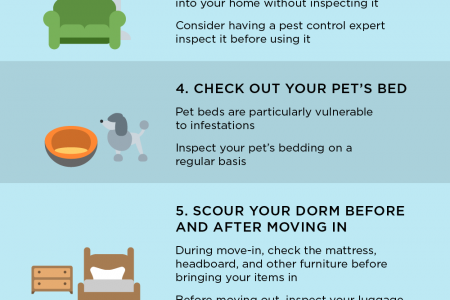 7 Strategies for Keeping Bed Bugs at Bay Infographic