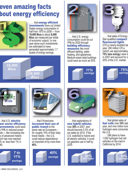 7 Surprising Facts About Energy Efficiency Infographic