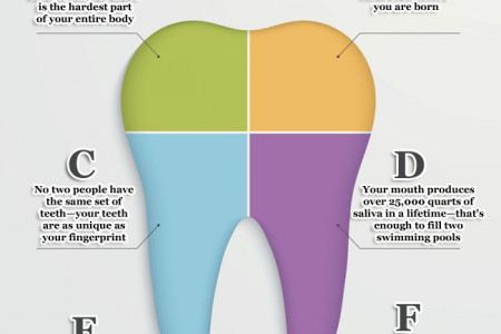 7 Things You Didn't Know About Your Teeth Infographic