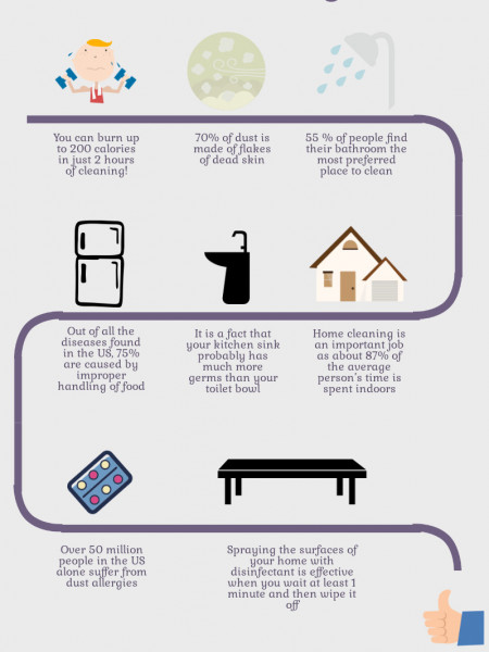 8 Curious Facts About House Cleaning Infographic