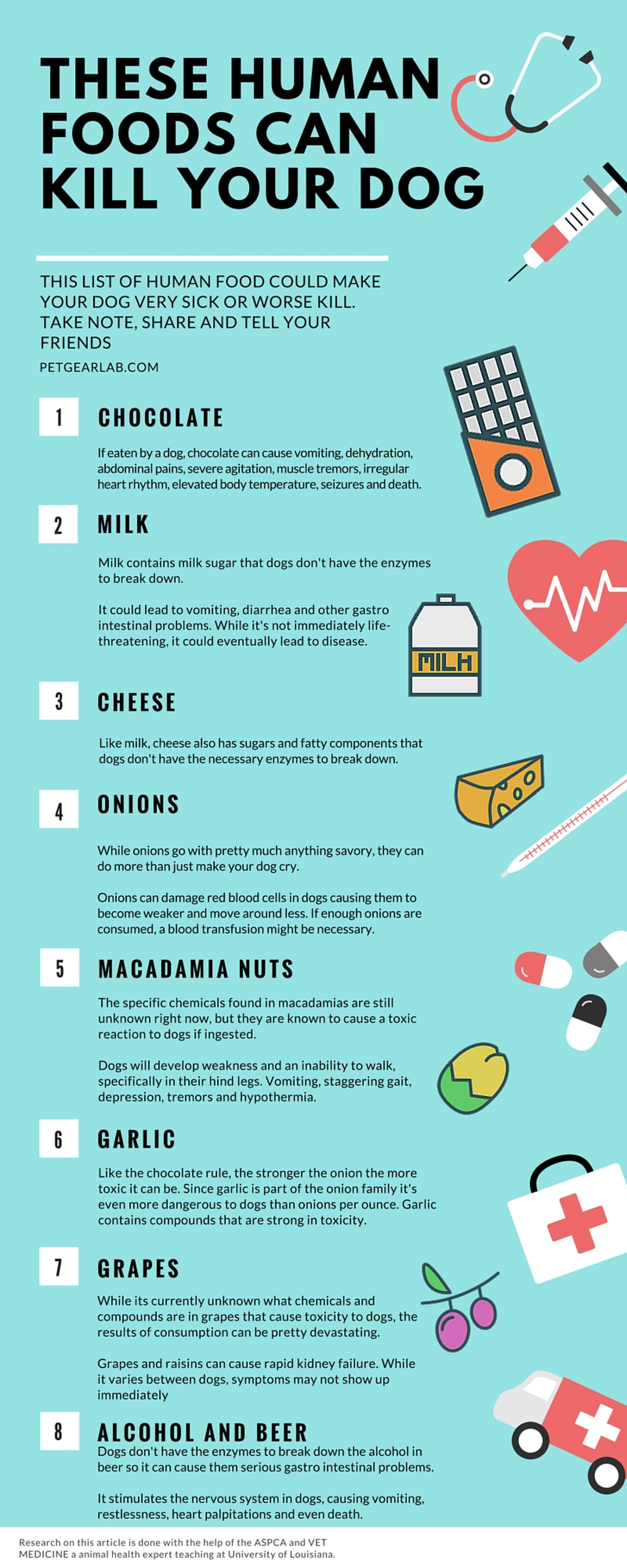 8 Human foods that can kill your dog Infographic