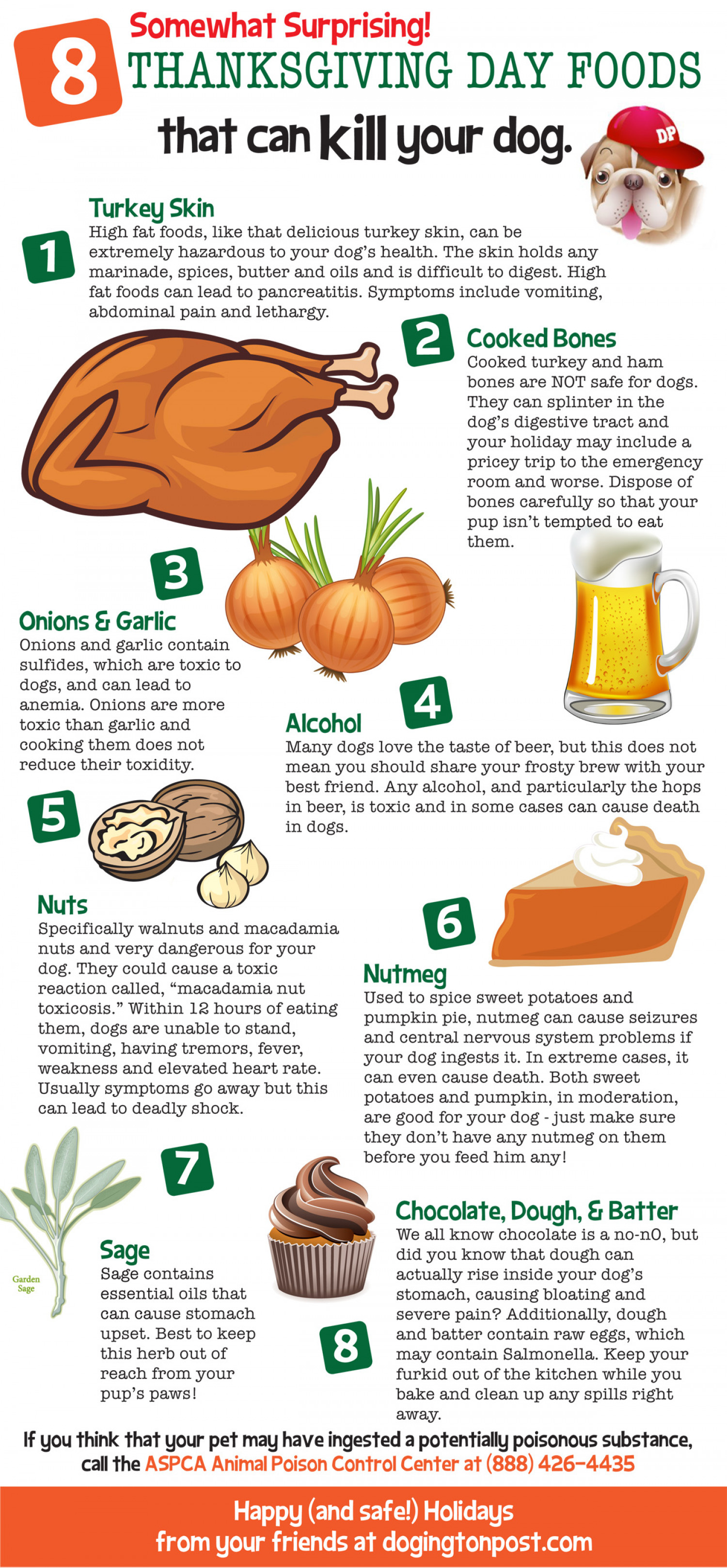 8 Thanksgiving Day Foods That Can Kill your Dog Infographic