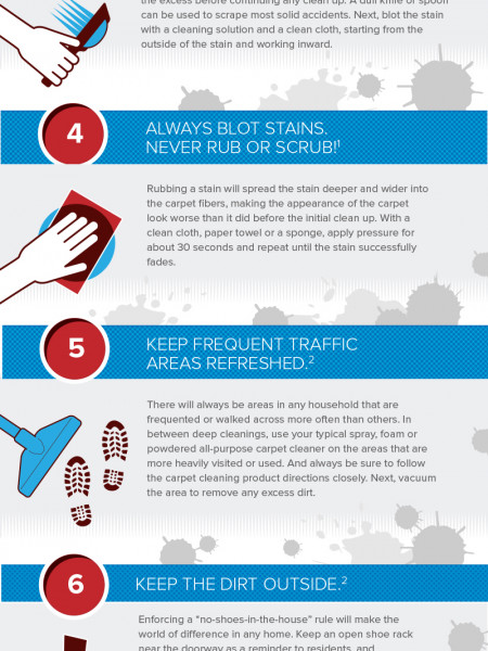 8 Tips for Removing Pesky Carpet Stains Infographic