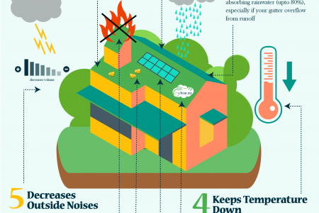 9 awesome facts about  Green Roofs Infographic