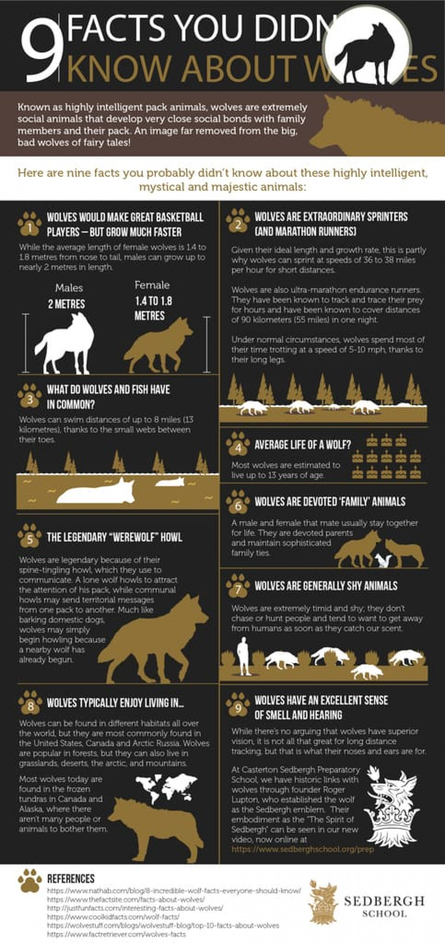 9 Facts You Didn't Know About Wolves Infographic
