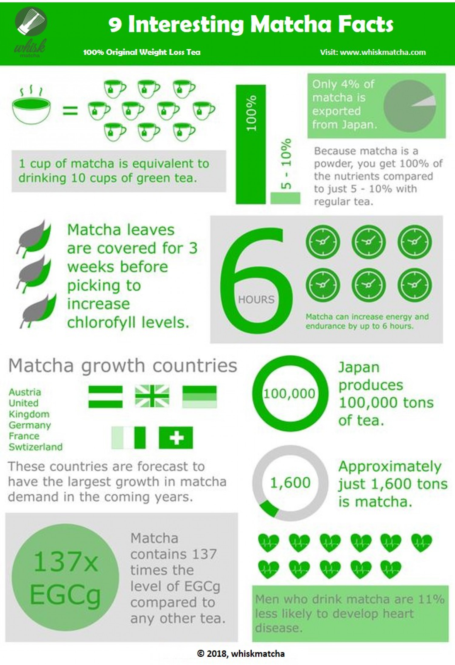 9 Interesting Matcha Facts  Infographic