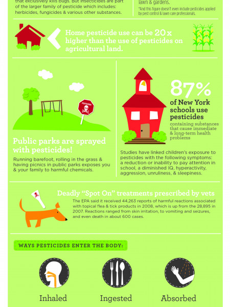 9 Shocking Facts About Pesticides Infographic