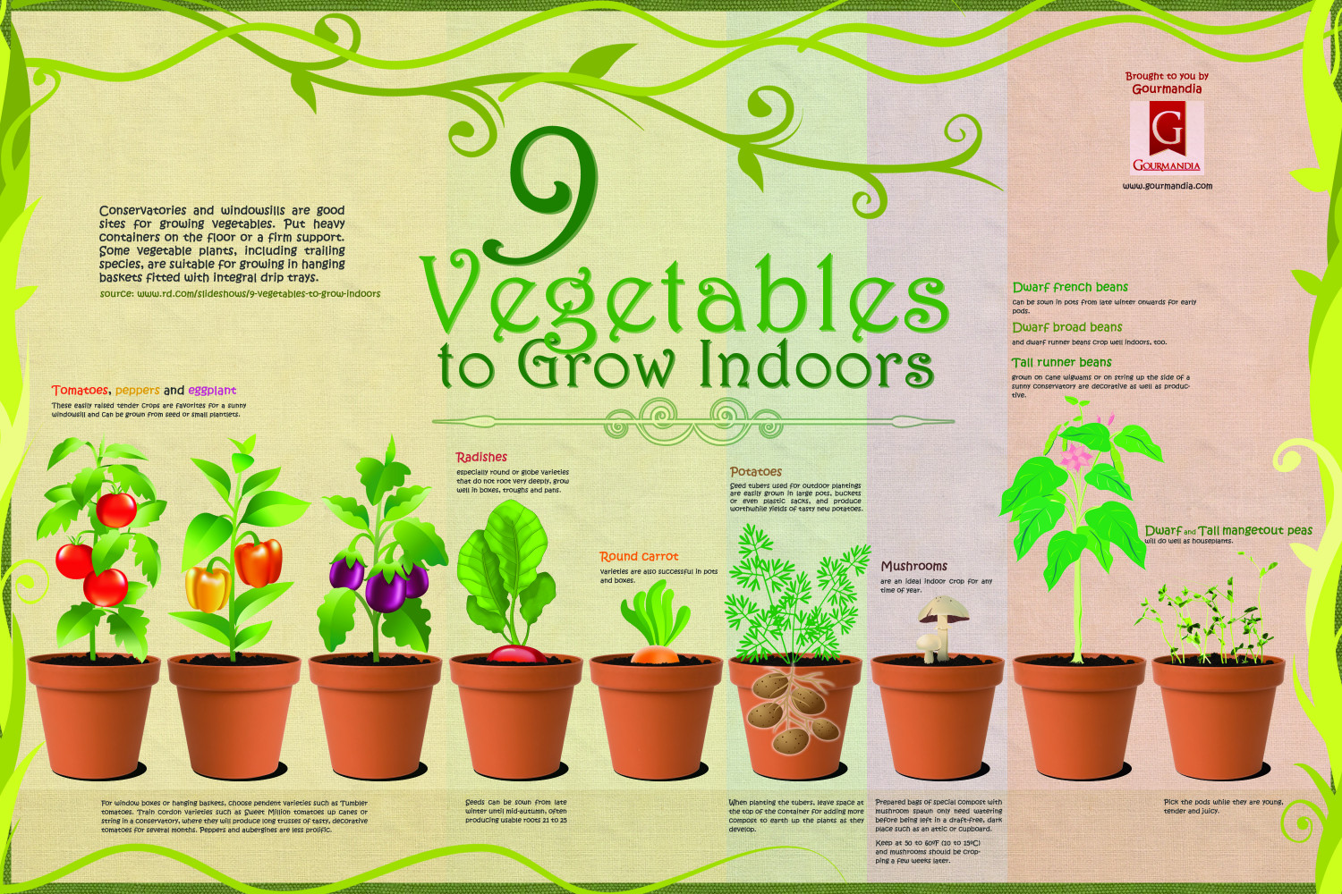 9 vegetables to grow indoors visual 9 vegetables to grow indoors infographic workwithnaturefo