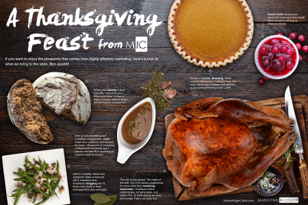 A Thanksgiving Feast From MIC Infographic