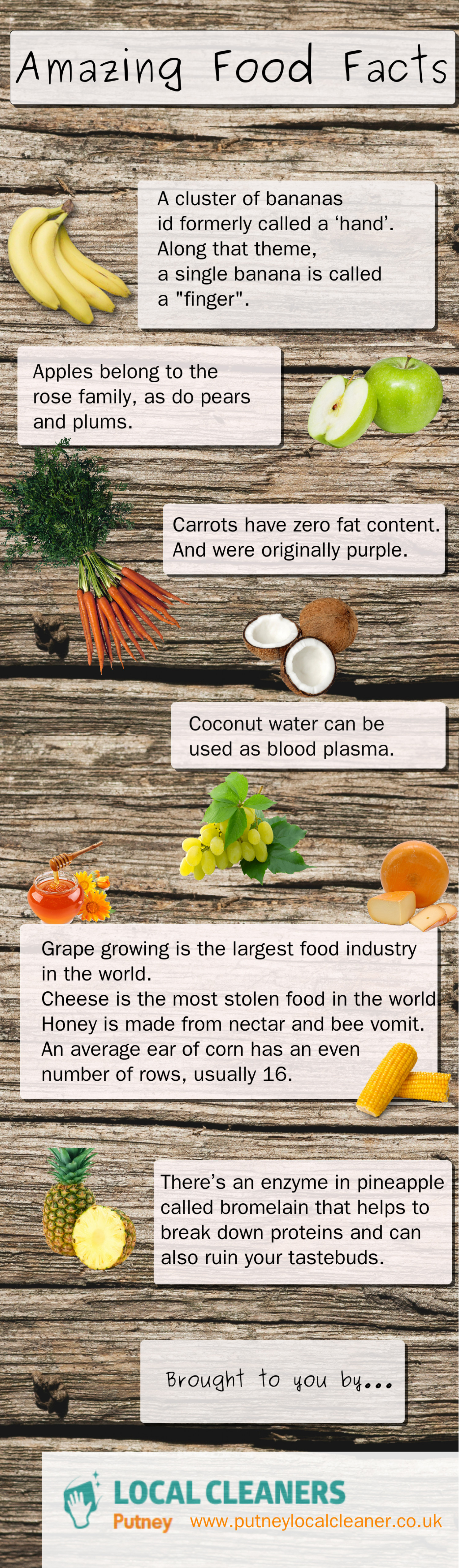 Amazing Food Facts Infographic