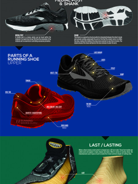 Anatomy of a Running Shoe Infographic