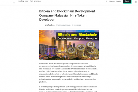Bitcoin and Blockchain Development Company Malaysia | Hire Token Developer Infographic