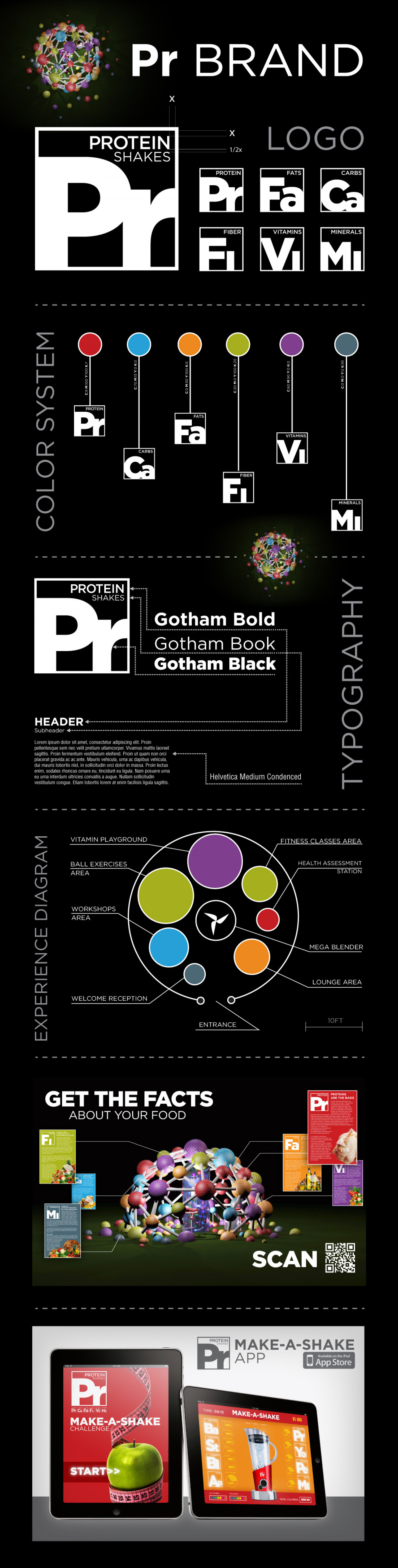 Brand Visual Guidelines Infographic Infographic