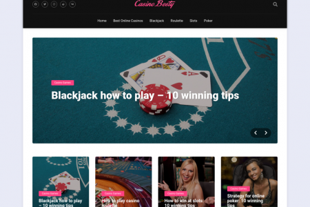 CasinoBesty - Online Casino Review Infographic
