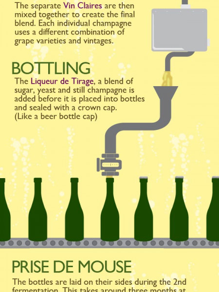 Champagne - From Vine To Wine Infographic