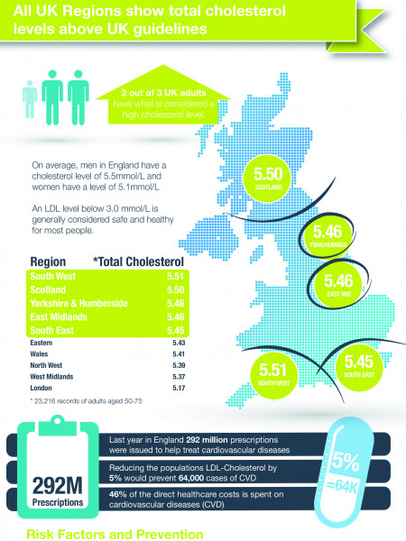 Cholesterol in the UK 2014 Infographic
