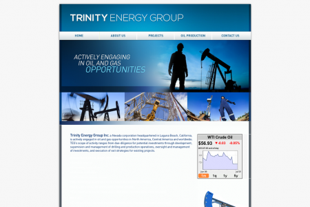 Contact Information of Trinity Energy Group Infographic