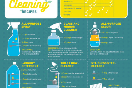 DIY Green Spring Cleaning Recipes Infographic
