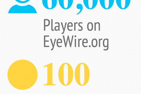 EyeWire Infographic